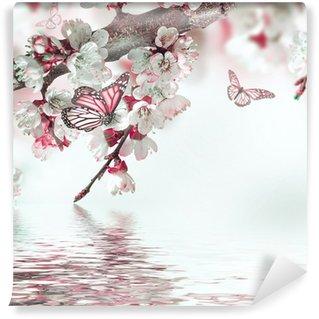Fototapeta Vinylowa Morelowe kwiaty na wiosnę, kwiatów w tle