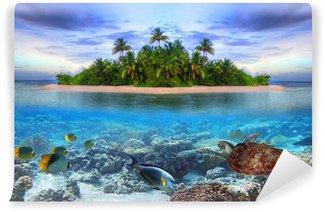 Vinylová Fototapeta Mořský život na tropickém ostrově Maledivy