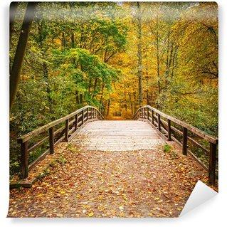 Vinylová Fototapeta Most v lese na podzim
