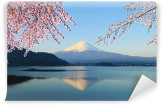 Vinylová Fototapeta Mount Fuji, pohled od jezera Kawaguchiko