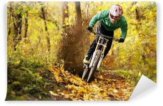 Vinylová Fototapeta Mountainbiker na koni v lese na podzim