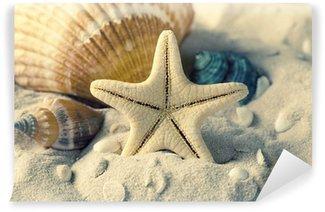 Vinylová Fototapeta Mušle a hvězdice na písku