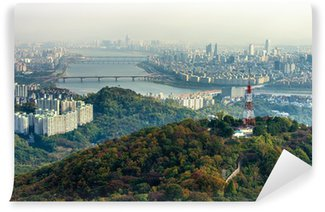 Vinylová Fototapeta N Seoul Tower