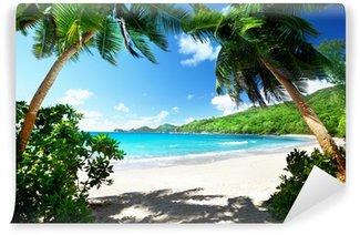 Fototapeta Winylowa Na plaży, Mahe Island, Seszele