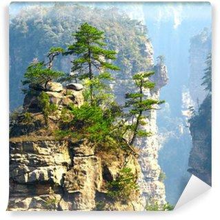 Vinylová Fototapeta Národní park Zhangjiajie, Čína. Avatar hory