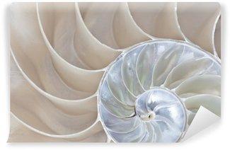 Vinylová Fototapeta Nautilus shell