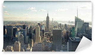 Vinylová Fototapeta New york skyline