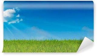 Fototapeta Winylowa Niedz błękitne niebo i zielona trawa - krajobraz - zielona łąka