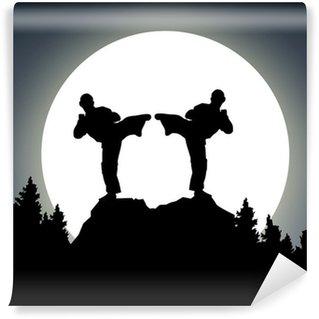 Vinylová Fototapeta Noční boj - měsíc