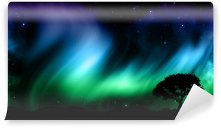 Vinylová Fototapeta Noční obloha se severák světla s siluety stromů