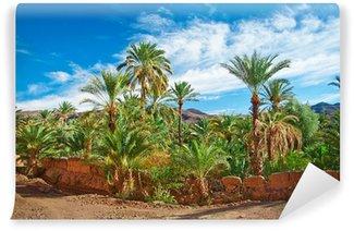 Vinylová Fototapeta Oasis s palmami uprostřed pouště
