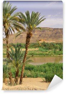 Vinylová Fototapeta Oasis Tamnougalt v Draa Valley, Maroko