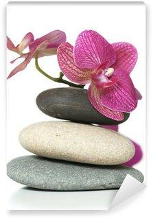 Vinylová Fototapeta Orchid, kterým se na kamenech