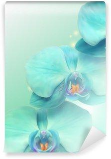 Vinylová Fototapeta Orchid květiny na pozadí