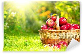 Vinylová Fototapeta Organické Jablka v košíku venkovní. Orchard. Autumn Garden