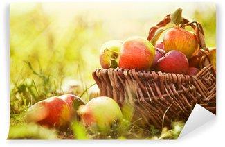 Vinylová Fototapeta Organické jablka v létě trávě