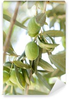 Vinylová Fototapeta Organické zelené olivy na olivovníku