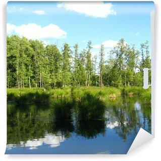 Vinylová Fototapeta Otevře se okno pro letní pole