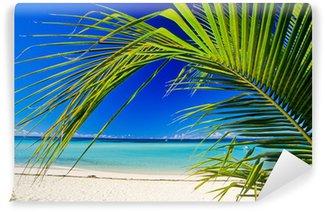 Vinylová Fototapeta Palm beach