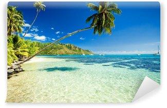 Vinylová Fototapeta Palm tree visí nad ohromující laguny