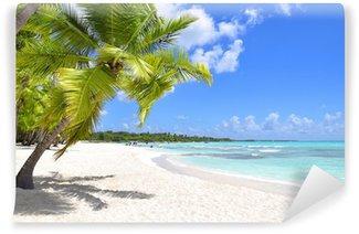 Vinylová Fototapeta Palmy a tropické pláži