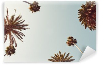 Fototapeta Vinylowa Palmy patrząc w górę do nieba rocznika