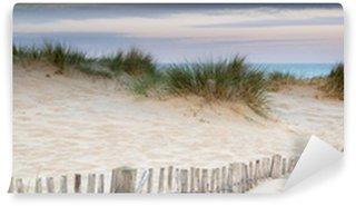 Vinylová Fototapeta Panorama krajiny písečných dun systému na pláži při východu slunce