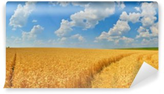 Fototapeta Winylowa Panorama pola pszenicy