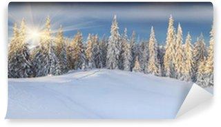 Fototapeta Winylowa Panorama słoneczny zimowy krajobraz w górach