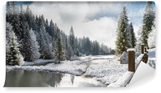 Vinylová Fototapeta Panorama Winter Utrom v Carpathia