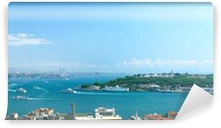 Vinylová Fototapeta Panoramatický výhled na Istanbul, Turecko.