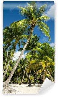 Vinylová Fototapeta Paradise pláž s palmami na bílém písku