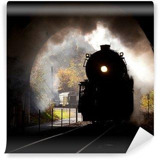 Vinylová Fototapeta Parní lokomotiva vstoupí tunelu