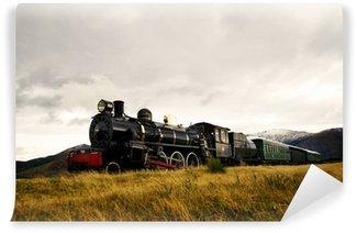 Vinylová Fototapeta Parní vlak ve volné přírodě