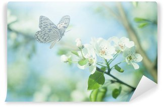 Fototapeta Winylowa Pastel colored photo of butterfly and spring flowers