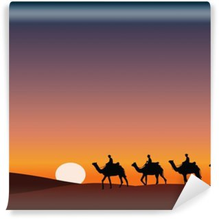 Vinylová Fototapeta Paysage_Desert_Dromadaire_crépuscule
