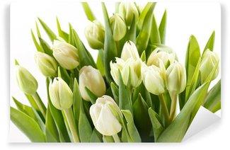 Vinylová Fototapeta Pěkné tulipány
