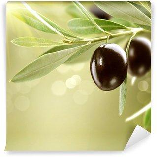 Vinylová Fototapeta Pěstování oliv. Black Zralé olivy na stromě