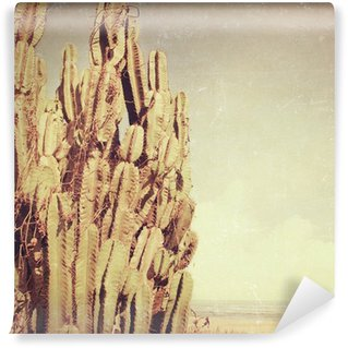 Vinylová Fototapeta Photobeach-20