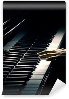 Vinylová Fototapeta Pianista ruka klavírní hudba hrát.