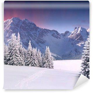Fototapeta Winylowa Piękny zimowy krajobraz w górach. Wschód słońca