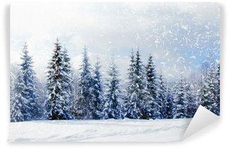 Fototapeta Winylowa Piękny zimowy krajobraz z drzew pokryte śniegiem