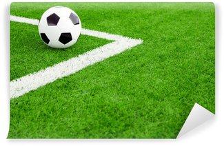 Fototapeta Vinylowa Piłka nożna na boisko do piłki nożnej