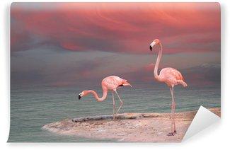 Vinylová Fototapeta Pink flamingo