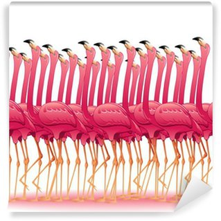 Vinylová Fototapeta Pink Flamingos Group-Fenicotteri Rosa Gruppo Stormo-Vector