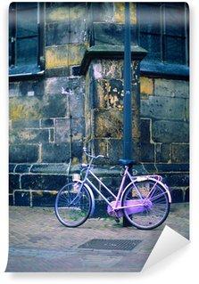 Vinylová Fototapeta Pink kol