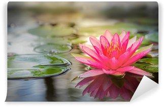 Vinylová Fototapeta Pink lotus