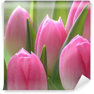 Vinylová Fototapeta Pink Tulips
