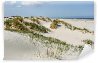 Vinylová Fototapeta Písečné duny na pobřeží Nizozemska