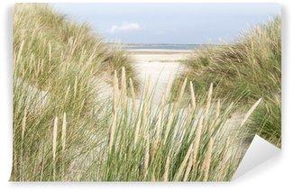 Vinylová Fototapeta Písečné duny v Nizozemsku